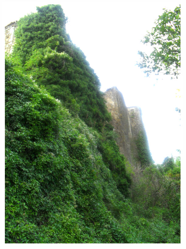 Face Nord du château de Rennes-le-Château